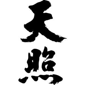 """""""天照(縦書)""""書道家が書くかっこいい漢字Tシャツ"""