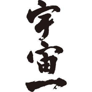 """""""宇宙一(縦書)""""書道家が書くかっこいい漢字Tシャツ"""