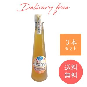 島原百年生姜 ジンジャーシロップ 250g×3瓶 松本農園 長崎県産