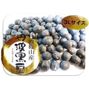 豆力 兵庫県篠山産 丹波黒大豆(特大粒3L) 200g|tabemon-dikara