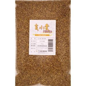 豆力 北海道産 玄小麦(きたほなみ) 1kg  tabemon-dikara
