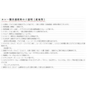 コスモ直火焼 カレールー 中辛 170g×3袋  【コスモ食品 フレーク】|tabemon-dikara|03