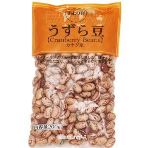 豆力 豆専門店のうずら豆(クランベリー豆) 200g|tabemon-dikara