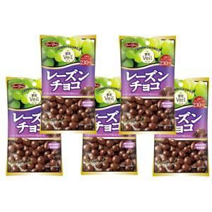 グルメな栄養士セレクト洋菓子 レーズンチョコ 47g×5袋  【正栄デリシィ チョコレート ぶどうチョコ】|tabemon-dikara