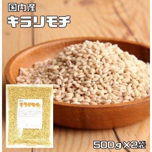 豆力 こだわりの国産もち麦(キラリモチ) 1kg(500g×2袋)  【もちむぎ 大麦 裸麦】 tabemon-dikara