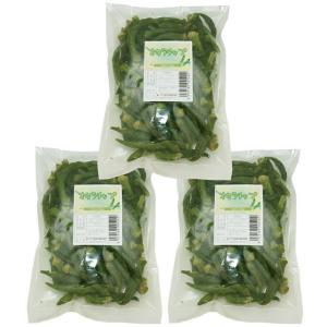 世界の乾燥野菜 ベトナム産 ゴーヤチップ 200g×3袋     【ドライ 干し 乾燥ゴーヤ】|tabemon-dikara