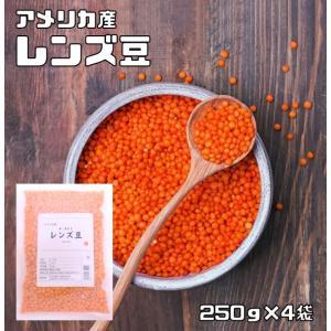豆力 豆専門店のレンズ豆(赤:皮むき) 1kg |tabemon-dikara