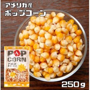 豆力 豆専門店のポップコーン 250g|tabemon-dikara