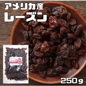 世界美食探究 アメリカ産 レーズン 250g