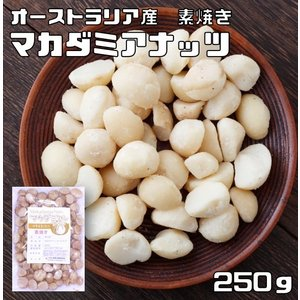 世界美食探究 オーストラリア産 マカダミアナッツ 250g【素焼き】【無塩、無油】|tabemon-dikara
