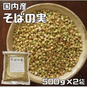 豆力 こだわりの国産そばの実 1kg (むき蕎麦)【脱穀済み】|tabemon-dikara