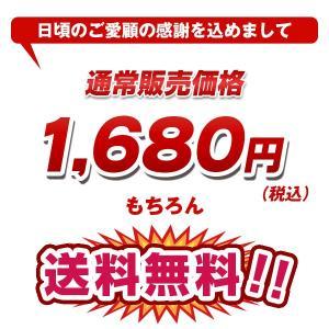 【セール】大容量モバイルバッテリー 10000mAh スマホ iPhone6 充電器 ALPHA LING【アイコス スマートフォン アイフォン】|tabtab|04