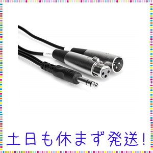Hosa SRC-204 4m ステレオフォンオス-XLRオス/XLRメス インサーションケーブル|tachibana-store