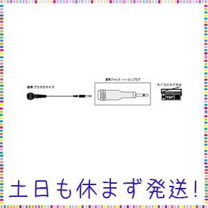 Victor 標準ジャック - ミニプラグ [AP-110A]|tachibana-store