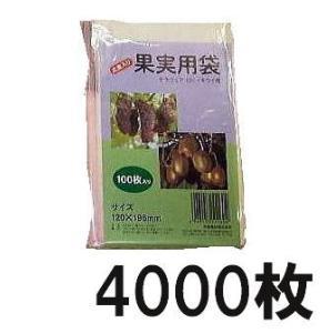 果実掛袋 果実袋(小) デラウェア(小)・キューイ用 100枚入×40袋 針金付き tackey