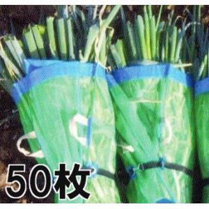 ネギマキネット 包装ネット 60×100cm Sタイプ 50枚 マキマキネット|tackey