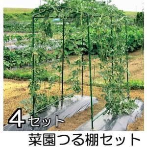 菜園つる棚セット 徳用4セット 第一ビニール tackey
