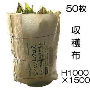 収穫袋 収穫布 ベンリークロス H1000×1500 色 ベージュ  50枚 ネギマキネット (法人...