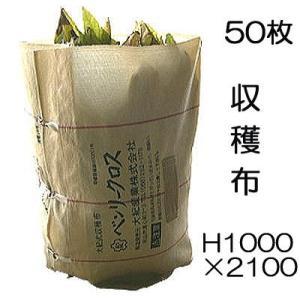 ベンリークロス 収穫袋 収穫布 H1000×2100 色 ベージュ 50枚 ネギマキネット (法人限...