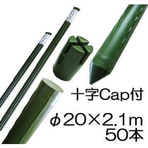 園芸支柱 イボ付 鋼管竹 十字キャップ付 φ20mm×2.1m 50本単位 シンセイ tackey