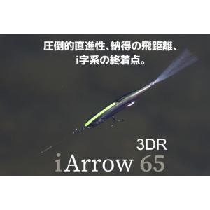 イマカツ アイアロー65 3Dリアリズム ダズラーヘアー【送料220円】|tacklegarage-grow