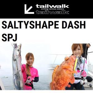 【大型商品】 テイルウォーク ソルティシェイプ ダッシュ 634 スローピッチジャーク