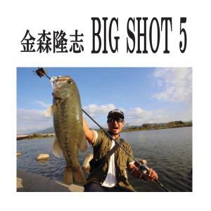 ご予約 DVD 金森隆志 BIGSHOT5|tackleislandsukimaru