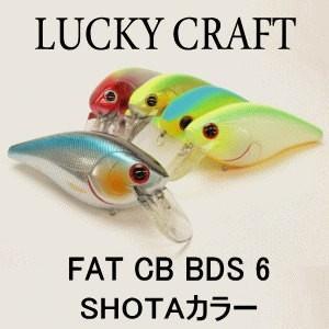 ラッキークラフトUSA FAT CB B.D.S.6 SHOTAカラー tackleislandsukimaru