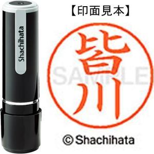 シヤチハタ ネーム9 XL−9 2459 皆川