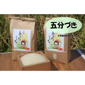 新米 五分づき米 ポイント消化に 特別栽培米あきたこまち 秋田県大潟村産 2kg taguchi-farm