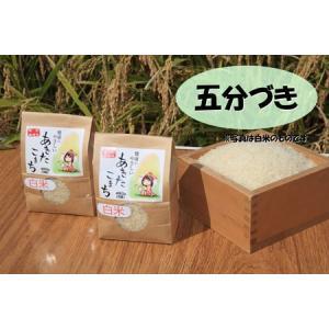 新米 五分づき米 ポイント消化に 特別栽培米あきたこまち 秋田県大潟村産 3合入り2袋セット taguchi-farm
