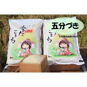 新米 五分づき米 特別栽培米あきたこまち 秋田県大潟村産 5kg taguchi-farm
