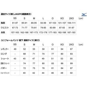 【MIZUNO】ミズノ 野球用練習着 ユニフォームパンツ 12jd6f6 tai-spo 02