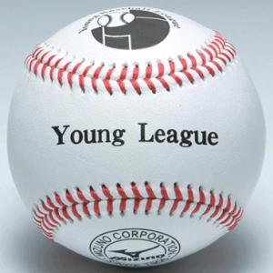【MIZUNO】ミズノ 硬式ボール ヤングリーグ試合球 1ダース売り 1bjbl71200|tai-spo