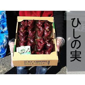 ヒシの実 菱の実 ひしの実 販売 2kg ご当地 合計約2キログラム 2020年販売開始します(もうすぐ終了します。)|taiho-kagu