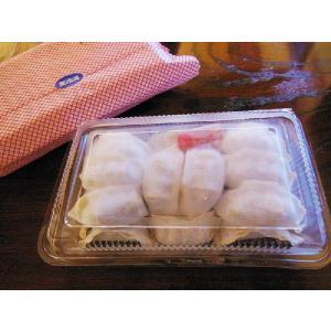 中華料理店の冷凍生餃子20コ入り|taiho-s