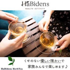 宮古ビデンスピローサ茶 30袋入り ノンカフェイン うるばな宮古|taikeido-ys|03