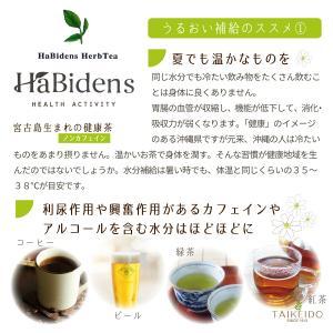 宮古ビデンスピローサ茶 30袋入り ノンカフェイン うるばな宮古|taikeido-ys|05
