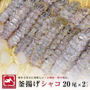 シャコ 刺身用しゃこ 20尾 2パック シャコエビ ガサエビ ボイル 寿司ネタ 珍味