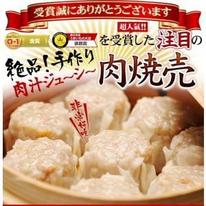 2セット以上購入でお料理サービス 送料無料 台湾肉焼売(生冷凍12個入り 簡易包装 お一人様用)|taipei