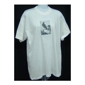 中国画のTシャツ(鷲)|taiqi