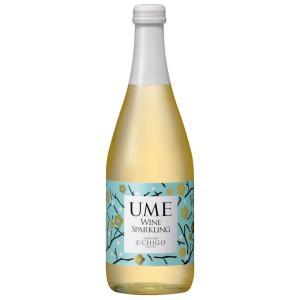 ワイン 越後ワイン スパークリングワイン 梅 500ml アグリコア 新潟県 南魚沼市|taiseiya