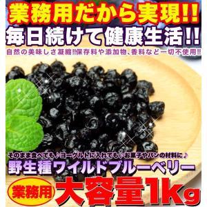 ワイルドブルーベリー 野生種 大容量1kg