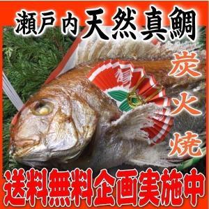 お食い初め 鯛 明石 淡路 瀬戸内 の 天然真鯛 1.7kgアップ を炭火でじっくり、焼鯛 に 祝い...