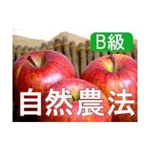 りんご お取り寄せ フルーツ 訳あり 【B級品】竹嶋有機農園...