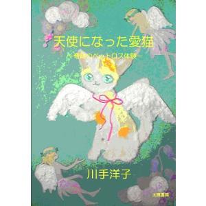 天使になった愛猫‐奇跡のペットロス体験‐(川手洋子・著)A5/95頁|taiyoshobo