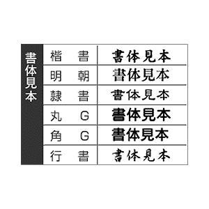 一行ゴム印(医療 科目)特注10ヶセット 印面サイズ:4×20mm|taiyotomah|02