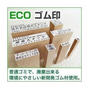 漢字・ひらがな・ローマ字OK! ECO ゴム印(オリジナル) 印面サイズ:15×30mm|taiyotomah