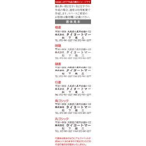セルフィン 住所印(ブルーボディ)インク色:黒・朱/縦・横作成可|taiyotomah|03