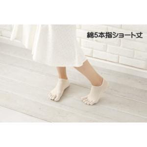 綿100 5本指靴下  ショート丈  23〜25cm 抗菌・防臭加工|taiyounitto